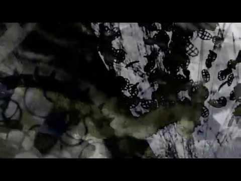 Future Disciple - The Protector (Original Mix)