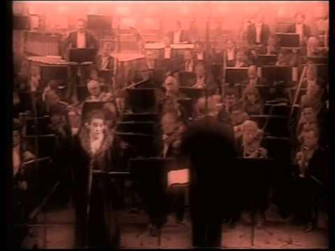 Dunja Vejzović / Parsifal - Götterdämmerung - Don Carlo - Werther - Salome