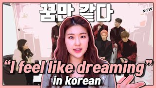 """I feel like dreaming"" in Korean! Learn Korean with K POP Idols"