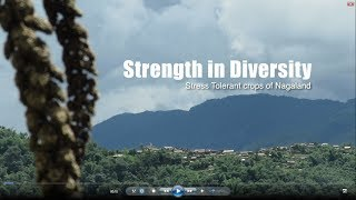 Strength In Diversity, Stress Tolerant Crops of Nagaland