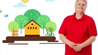 Голова садовая - Засолка томатов