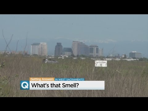 What's That Rotten Smell In Yolo County?