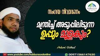 മന്ത്രിച്ച് അടുപ്പിലിടുന്ന   ഉപ്പും മുളകും?   Latest Islamic Speech Malayalam   Muneer Aslami Usthad