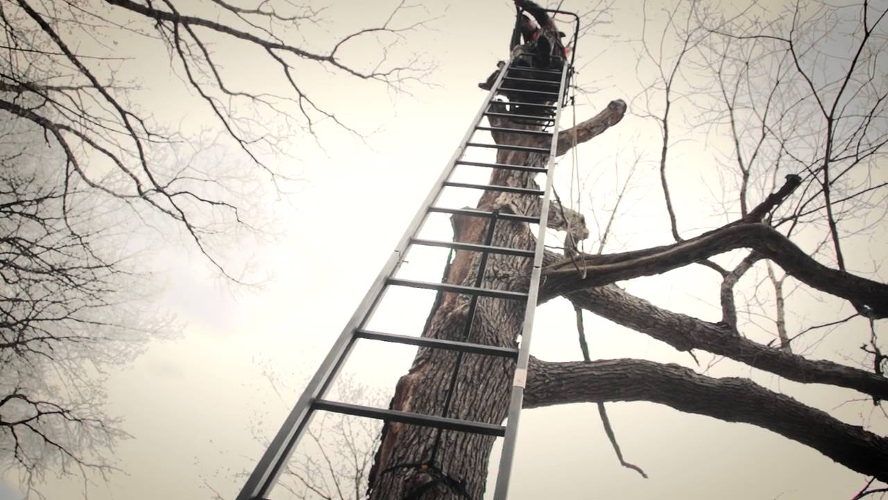 Guide Gear 25 Deluxe Double Rail Ladder Tree Stand Youtube