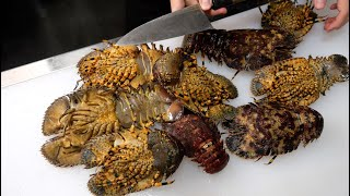 Crack Open and Eat Bunch of Insect-Looking Creatures