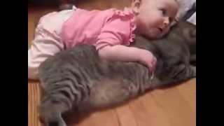 Bebegin kedi sevgisi