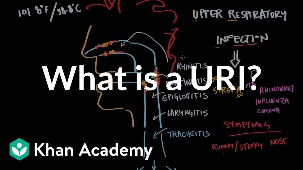 What is an upper respiratory infection (URI)?