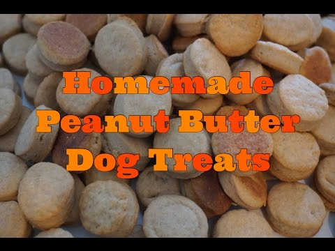 Homemade Peanut Butter Dog Treats + Recipe