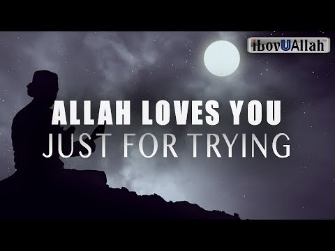 ALLAH LOVES YOU JUST FOR TRYING