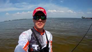 Ловля головля с берега на Днепре Favorite Arena Stream ARNS 662UL Даига Квест