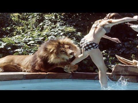 150 खतरनाक जानवरों के साथ शूट हुई थी यह फिल्म, 70 लोग हुए थे घायल thumbnail