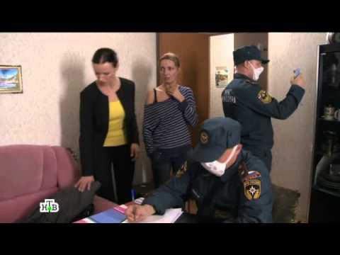 Прокурорская проверка смотреть онлайн фото 491-541