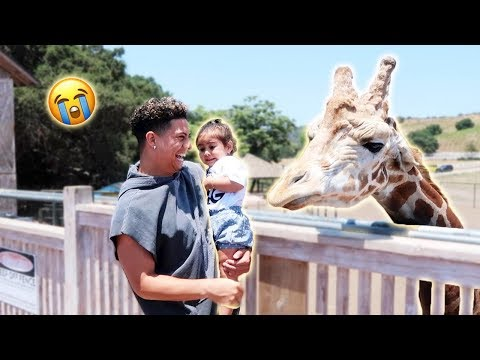 ELLE MEETS THE GIRAFFE...AND SHE FREAKS OUT!!! (SORRY ELLE)