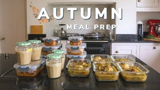 Autumn meal prep for the month (18 freezer meals)