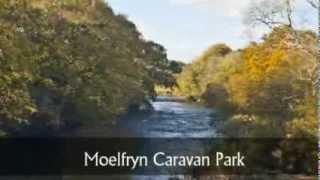 Moelfryn Caravan Park