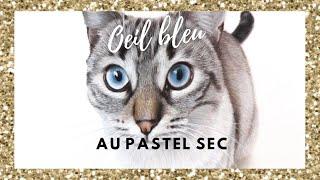 TUTO Œil bleu de chat au Pastel Sec