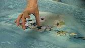 28 сен 2016. Цена — от 2500 рублей. Здесь можно найти короткие жакеты, жилеты с отложным воротником, пончо. Эти же свойства помогут жакетам из вареной шерсти заменить не слишком стильные. Береты и мягкие шляпки приехали на ярмарку из москвы. Шерстяные и мохеровые беретики.
