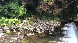休暇で湯河原に来ています。 落ち着く自然に包まれて、いい感じです。