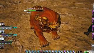 [Mobius Final Fantasy Ring of Braves] 5☆ Yojimbo the Wandering Swordsman (Skyseer x7; Healer)
