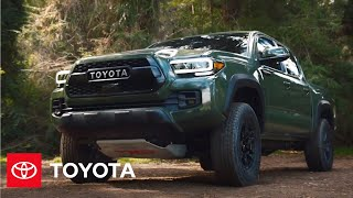 homepage tile video photo for 2020 Toyota Tacoma Pickup | Feature Freestyle | Extreme Camping with Andy Bell