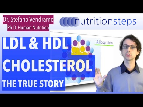 Nutrition Steps 5.14 - LDL and HDL Cholesterol