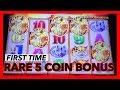 RARE 5 COINS BUFFALO GOLD BONUS MAX BET @ The Cosmopolitan | NorCal Slot Guy