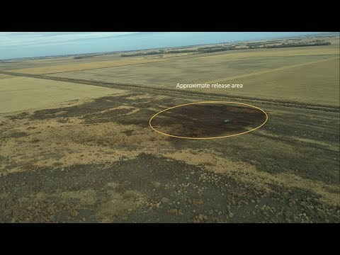 Keystone Pipeline Springs Massive Leak