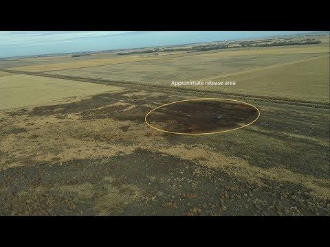 Keystone Pipeline Springs Massive Leak