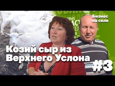 видео: Бизнес на селе #3: Козий сыр из Верхнего Услона