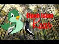 Suara Kicau Burung Sirtu Cipoh Isian Kacer  Mp3 - Mp4 Download