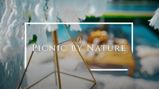 Picnic by Nature | Boho Luxury Picnic | Sony a7siii