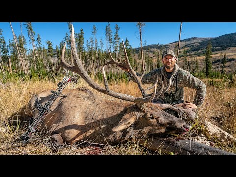 WYOMING BULL with a BOW!!! – (CRAZY Public Land Elk Hunt)