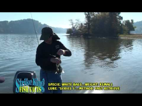 """Fishin' Affliction TV Episode #37: """"Kentucky Lake with Todd Phillips"""" Pt. 1"""