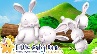 Sleeping Bunnies Song - Nursery Rhymes and Baby Songs | Songs For Kids | Learn with Little Baby Bum