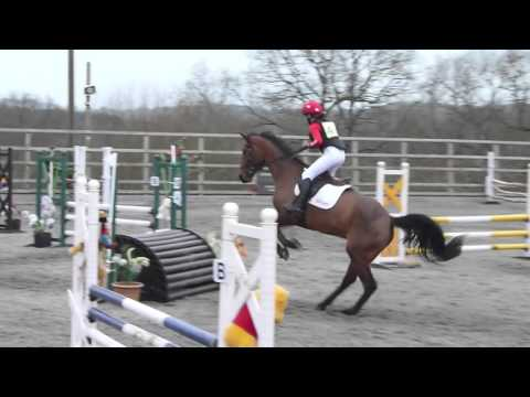 Petley Wood Arena Eventing - Drumreagh Star