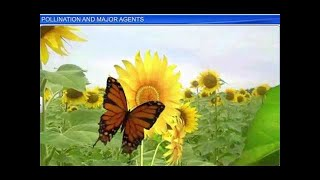 CBSE Class 12 Biology, Sexual Reproduction in Flowering Plants-3, Pollination and Major Agents