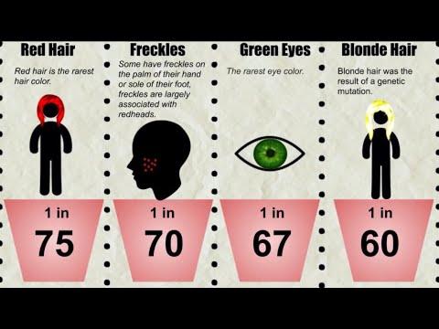 Probability Comparison: Genetics