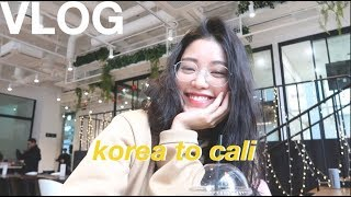 Weekly Vlog | Hanging out with my viewers in Korea, spontaneous trip to Cali