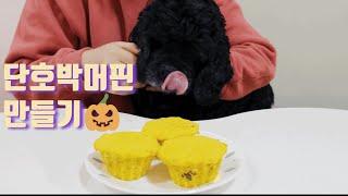 강아지간식 베리베리 단호박 머핀 만들기/making D…