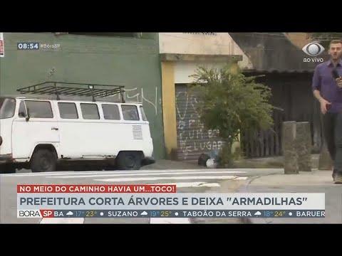 """SP: Prefeitura de Santo André corta árvores e deixa """"armadilhas"""""""