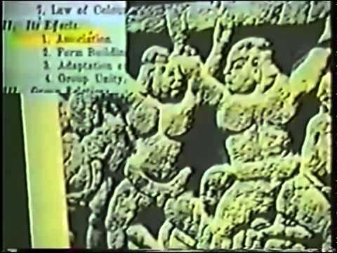 Black Buddha          Nagajuna        Dravidians         Africans