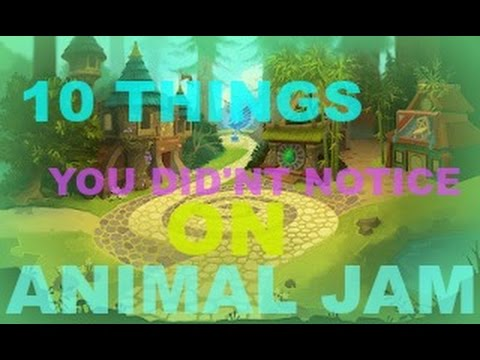 Animal Jam, 10 Things You Didn't Notice