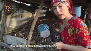 Yöresel Yemekleri Tanıtıyor - Köylü Kızı Semra