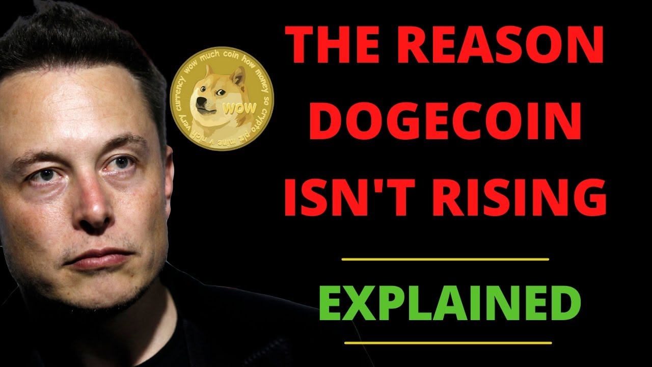 WILL DOGECOIN DROP TO 18 CENTS?? WHY?? LATEST NEWS ...