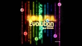 Soulful Evolution April 27th 2012 HD Weekly Soulful House Show (13)