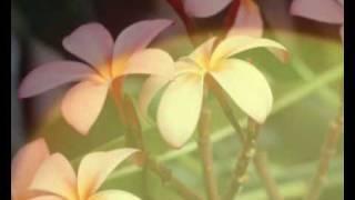 Sonnen und Mondfinsternis für Imam Mahdi - 6/6 Islam Ahmadiyya