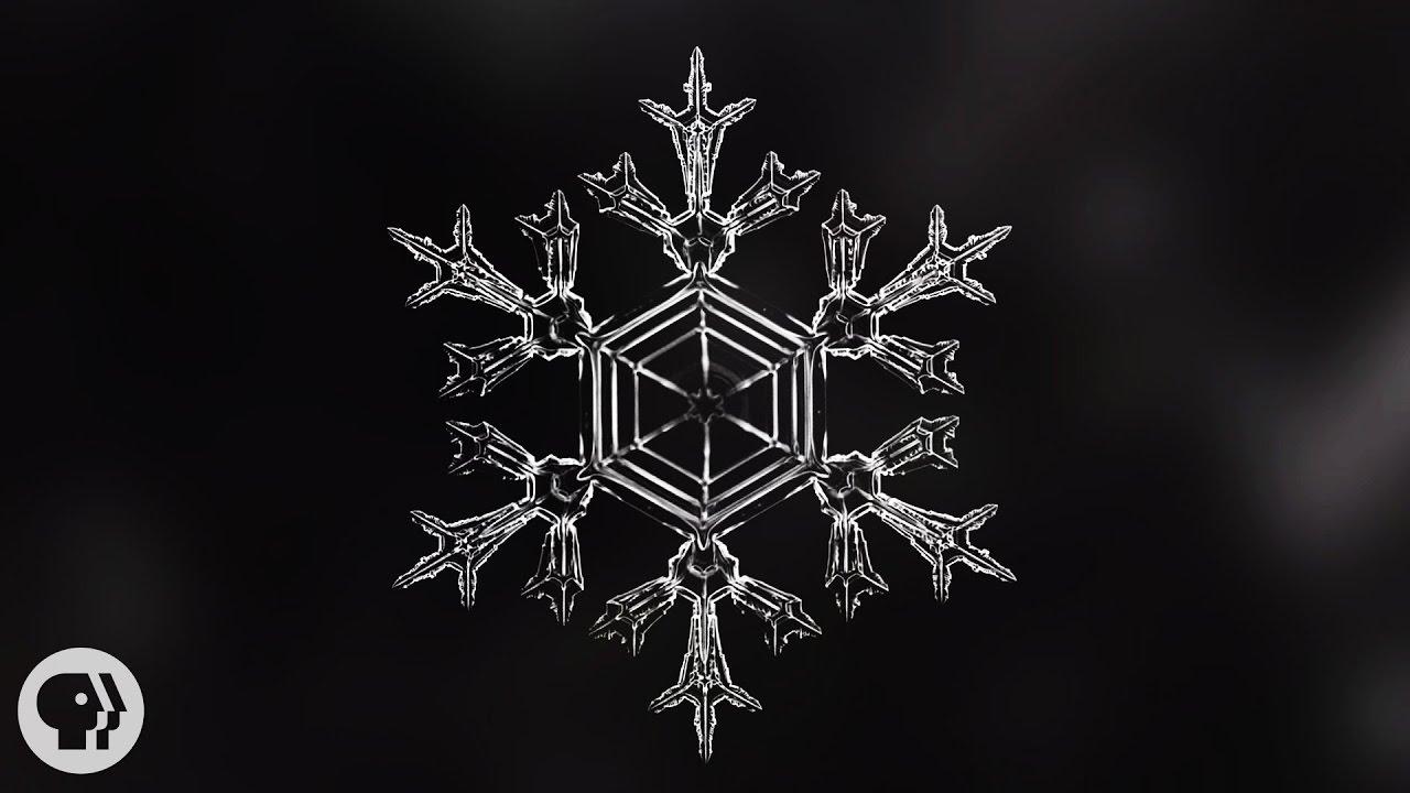 identical snowflakes scientist ruins