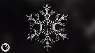 Identical Snowflakes? Scientist Ruins Winter For Everyone.  |  Deep Look
