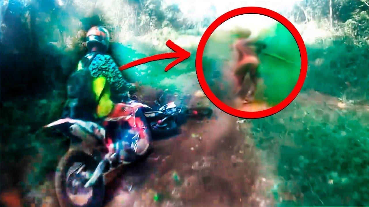 Extraña criatura fue hallada por excursionistas en Sumatra
