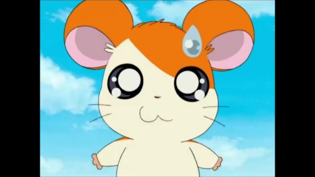 Hamtaro Anime Sound Effects 4